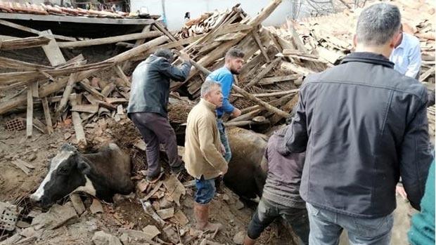 Deprem sonrası yürek sızlatan fotoğraflar
