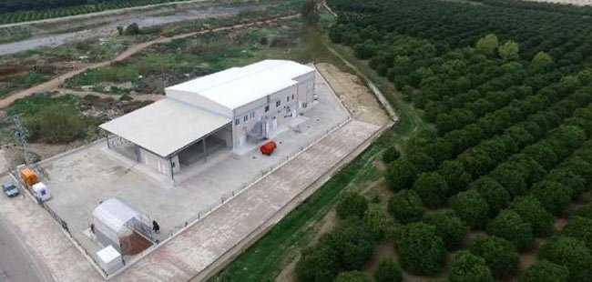 Büyükşehir'den hayvancılığa destek