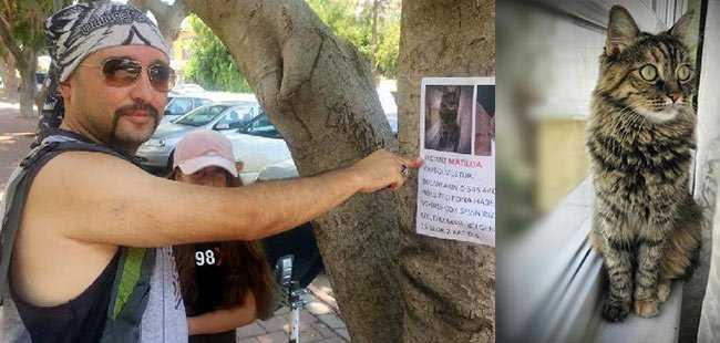 Kayıp kedisini el ilanıyla arıyor