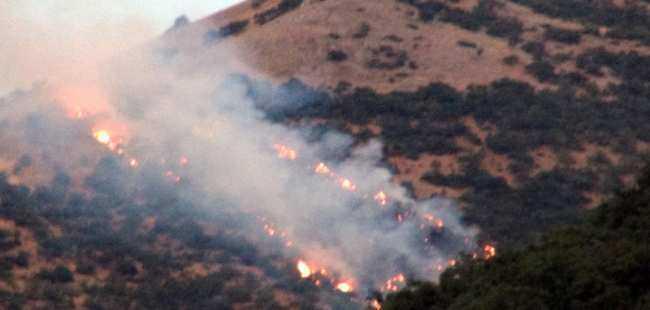 6 bölgede orman yangını çıktı