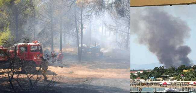 4 farklı noktada yangın çıktı