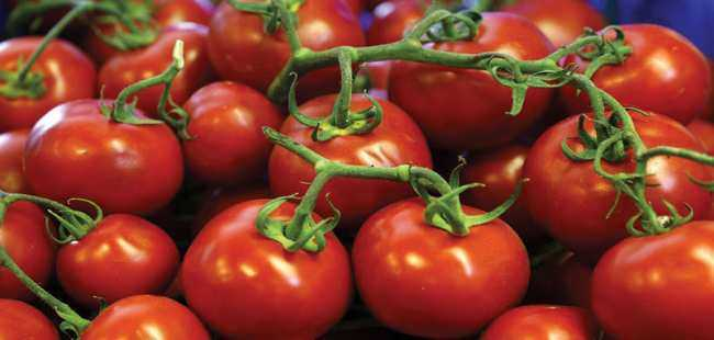 Rusya'dan Türk domatesi için flaş açıklama
