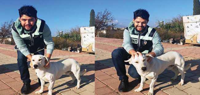 Polisin kurtardığı köpek sahiplendirildi