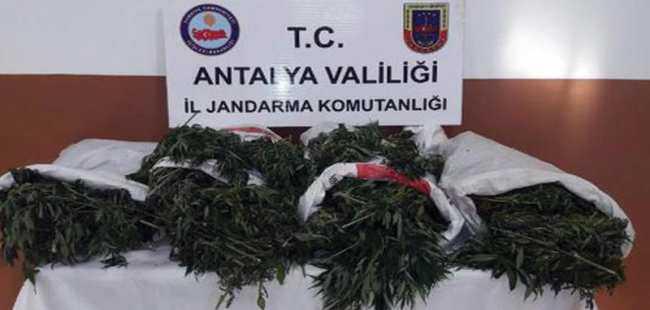 Antalya'da uyuşturucu taciri yakalandı