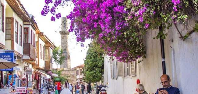 Antalya çiçek üretiminde lider