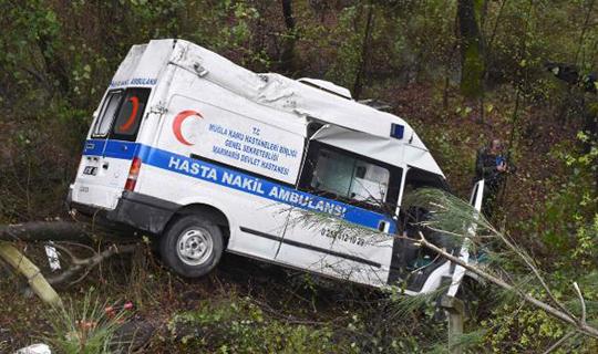 Ambulans şarampole uçtu