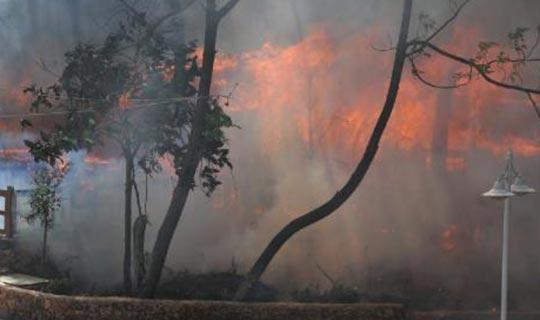 Antalya'da parkta yangın çıktı