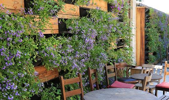 Antalya'da yeşil alanlar çoğaldı