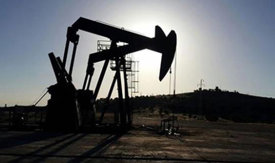 Petrol bulundu