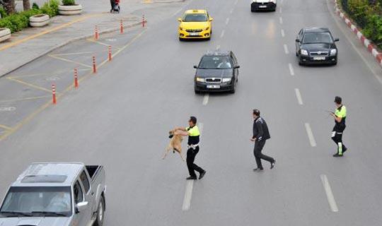 Antalya'da polisten örnek davranış