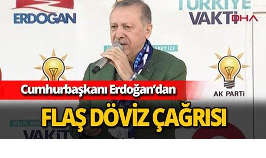 Cumhurbaşkanı Erdoğan'dan döviz çağrısı