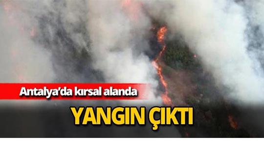 Kırsal alanda yangın çıktı
