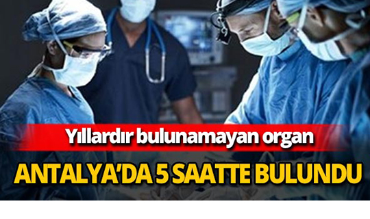 Yıllardır bulunamayan organ Antalya'da 5 saatte bulundu