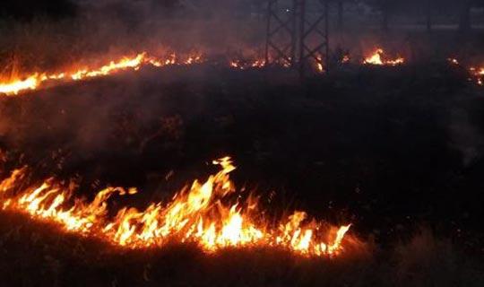Kaş'ta arazi yangını korkuttu