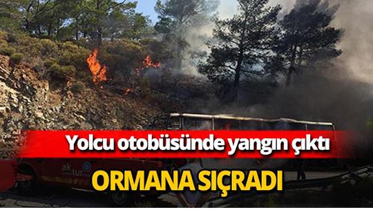 Yolcu otobüsündeki yangın ormana sıçradı
