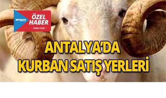2018 Antalya'da kurban satış yerleri