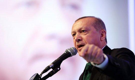 Cumhurbaşkanı Erdoğan, Ordu'da açıklamalarda bulundu