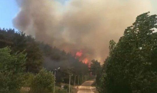 Orman yangını villalara sıçradı