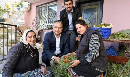 Zeytinköy'e dönüşüm haberi
