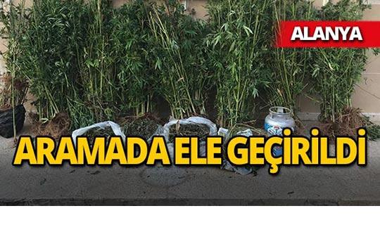 Alanya'da operasyon : Şüpheliler gözaltına alındı