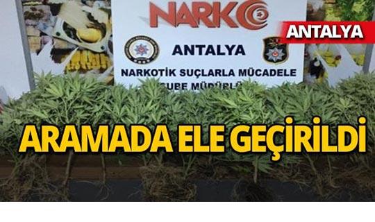 Antalya'da operasyon : 8 kişi tutuklandı