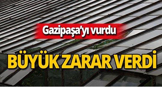 Gazipaşa'da ceviz büyüklüğünde yağdı, büyük zarar verdi!
