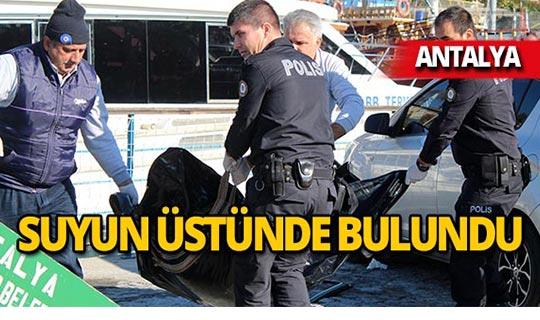 Antalya falezlerde fok sanıldı, ceset çıktı!