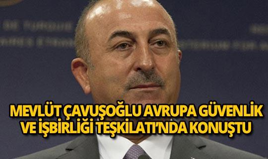 Bakan Çavuşoğlu, AGİT'te önemli açıklamalarda bulundu