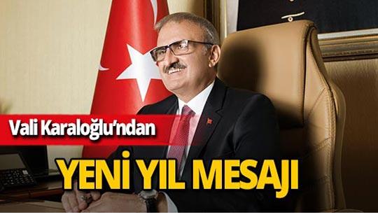 """Vali Karaloğlu: """"2018 rekorlar yılı oldu"""""""