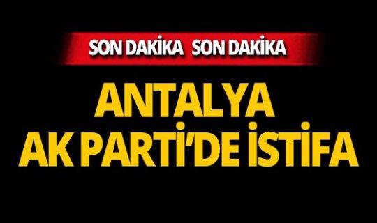 Antalya Ak Parti'de istifa!