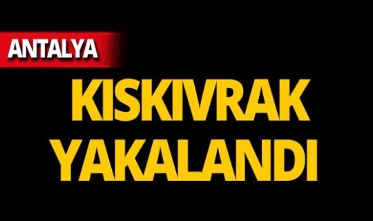 Antalya'da 9 yıl önceki kanlı kavga hakkında flaş gelişme!