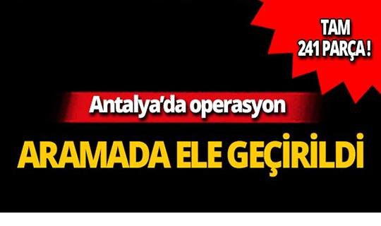 Antalya'da operasyon: 241 parça ele geçirildi!