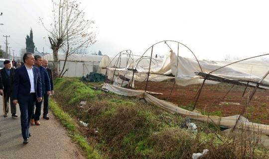 Başkan Uysal, kent merkezinde hortumun yıktığı seralarda incelemelerde bulundu