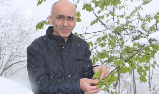 """Giresun Ziraat Odası Başkanı Karan: """"İşinizi şansa bırakmayın, tarım sigortası yaptırın"""""""