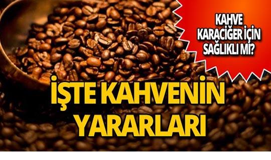 Kahve karaciğere iyi mi geliyor?