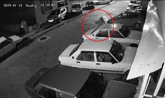 Otomobile levyeyle saldırdı