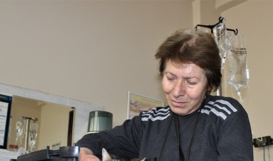 Diyabetli kedisini tedavi ettirmek için onlarca kilometre yol kat ediyor