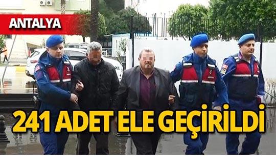 Antalya'da 241 adet ele geçirildi, o şahıs tutuklandı!