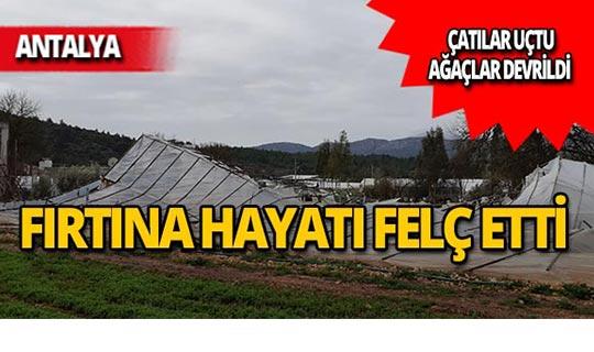 Antalya'da fırtına çatıları uçurdu, ağaçları devirdi!