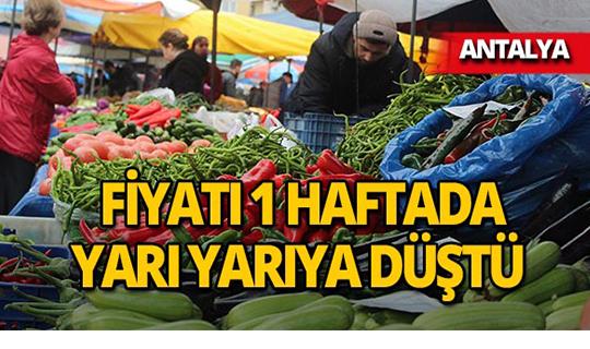 Antalya'da fiyatı yarı yarıya düştü!