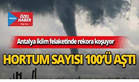 Antalya'da hortum sayısı 100'ü aştı!