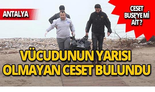 Antalya'da vücudunun yarısı olmayan ceset bulundu!