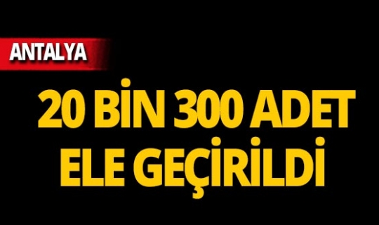 Antalya'da 20 bin 300 adet ele geçirildi!