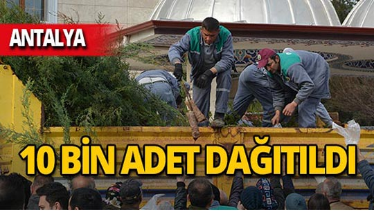 Antalya'da 10 bin adet ücretsiz dağıtıldı!