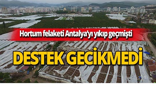 Antalya'da hortumdan zarar görenlere destek!