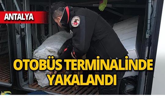Antalya'da otobüs terminalinde ele geçirildi!