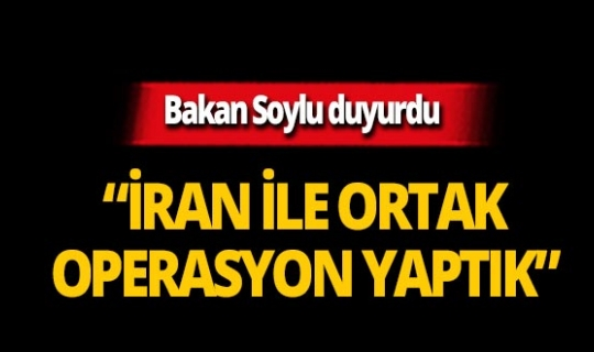 Bakan Soylu'dan ortak operasyon açıklaması!