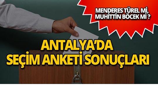 İşte Antalya seçim anketi sonuçları! Türel mi, Böcek mi?