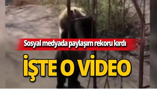 Bu video sosyal medyayı yıktı geçti!