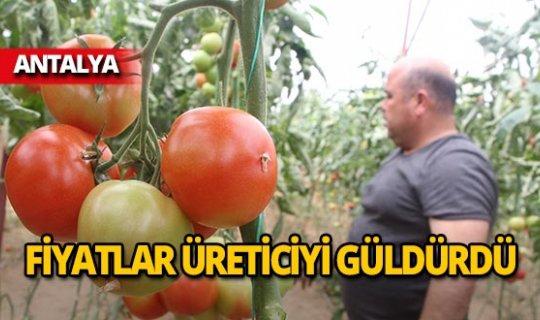 Antalya'da üreticinin yüzü gülüyor!